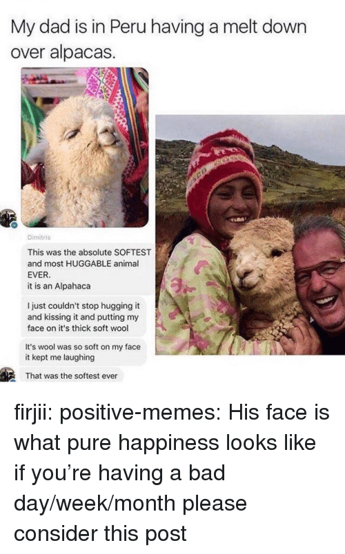 Peru: My dad is in Peru having a melt down  over alpacas  Dimitris  This was the absolute SOFTEST  and most HUGGABLE animal  EVER  it is an Alpahaca  l just couldn't stop hugging it  and kissing it and putting my  face on it's thick soft wool  It's wool was so soft on my face  it kept me laughing  That was the softest ever firjii: positive-memes: His face is what pure happiness looks like if you're having a bad day/week/month please consider this post