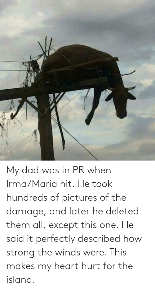 My Dad: My dad was in PR when Irma/Maria hit. He took hundreds of pictures of the damage, and later he deleted them all, except this one. He said it perfectly described how strong the winds were. This makes my heart hurt for the island.