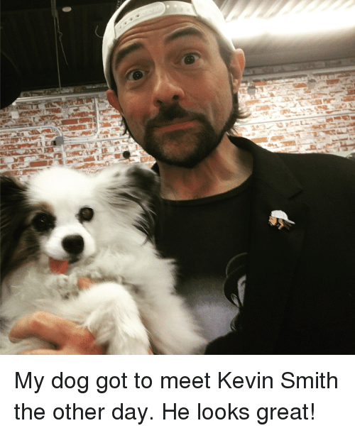 Kevin Smith, Got, and Dog: My dog got to meet Kevin Smith the other day. He looks great!