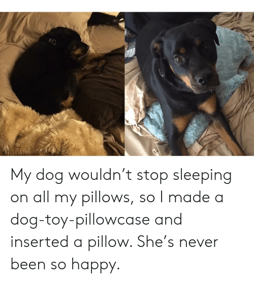 Happy, Sleeping, and Never: My dog wouldn't stop sleeping on all my pillows, so I made a dog-toy-pillowcase and inserted a pillow. She's never been so happy.