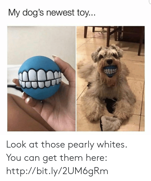 Whites: My dog's newest toy. Look at those pearly whites. You can get them here: http://bit.ly/2UM6gRm