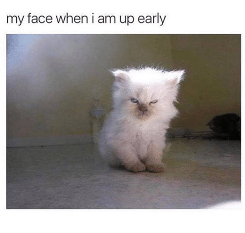 Relationships, My Face When, and Face: my face when i am up early