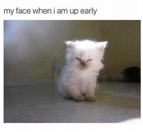 My Face When, Face, and  My Face: my face when i am up early