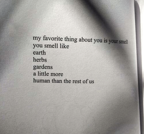 You Smell Like: my favorite thing about you is your smell  you smell like  earth  herbs  gardens  a little more  human than the rest of us