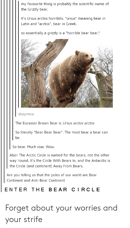 """antarctic: my favourite thing is probably the scientific name of  the Grizzly bear.  It's Ursus arctos horribilis. """"ursus"""" meaning bear in  Latin and """"arctos"""", bear in Greek.  so essentially a grizzly is a """"horrible bear bear.""""  shaymew  The Eurasian Brown Bear is Ursus arctos arctos  So literally """"Bear Bear Bear"""". The most bear a bear can  be.  So bear. Much roar. Wow.  Also! The Arctic Circle is named for the bears, not the other  way 'round. It's the Circle With Bears In, and the Antarctic is  the Circle (and continent) Away From Bears.  Are you telling us that the poles of our world are Bear  Continent and Anti-Bear Continent  ENTER THE BEAR CIRCLE Forget about your worries and your strife"""