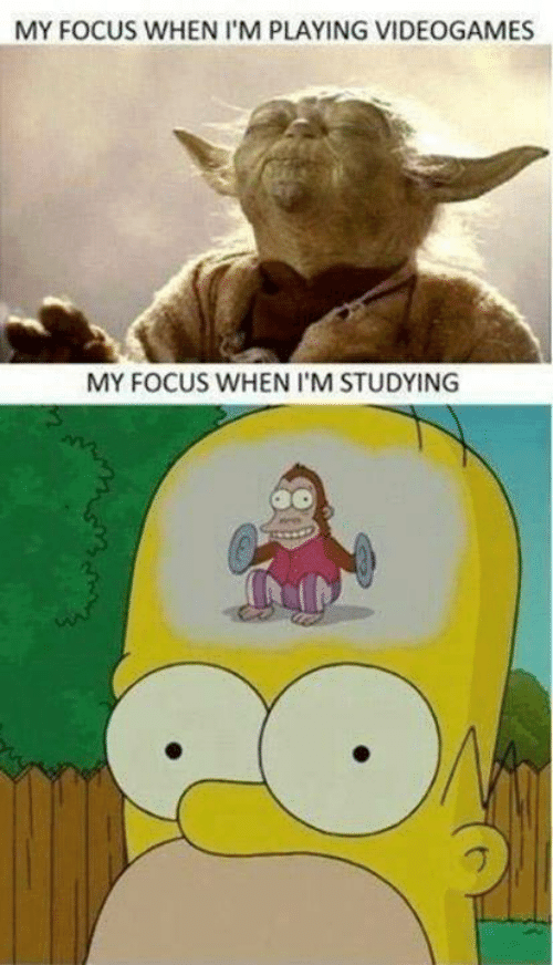 Focus, Videogames, and Studying: MY FOCUS WHEN I'M PLAYING VIDEOGAMES  MY FOCUS WHEN I'M STUDYING