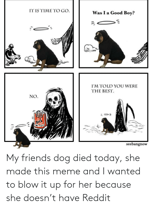 Died: My friends dog died today, she made this meme and I wanted to blow it up for her because she doesn't have Reddit