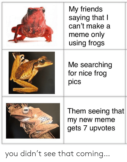 frogs: My friends  saying that I  can't make a  meme only  using frogs  Me searching  for nice frog  pics  Them seeing that  my new meme  gets 7 upvotes you didn't see that coming…
