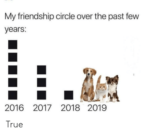 The Past: My friendship circle over the past few  years:  2016 2017 2018 2019 True