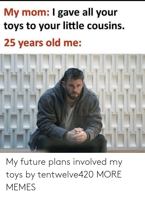Toys: My future plans involved my toys by tentwelve420 MORE MEMES