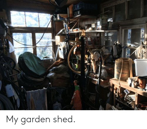 shed: My garden shed.