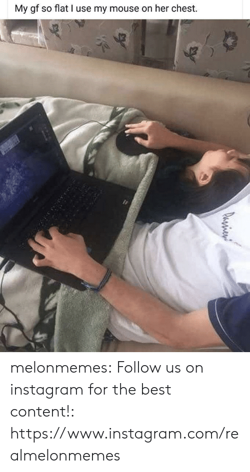 Instagram, Tumblr, and Best: My gf so flat I use my mouse on her chest.  Pasien melonmemes:  Follow us on instagram for the best content!: https://www.instagram.com/realmelonmemes