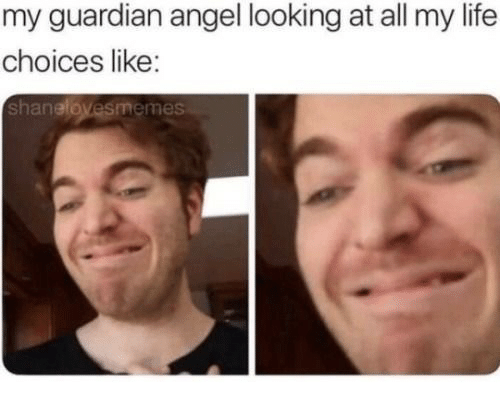 Life, Angel, and Guardian: my guardian angel looking at all my life  choices like:  shanelovesmemes