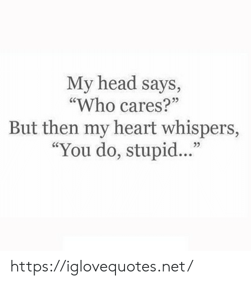 "Head, Heart, and Net: My head says,  ""Who cares?""  But then my heart whispers,  ""You do, stupid.."" https://iglovequotes.net/"