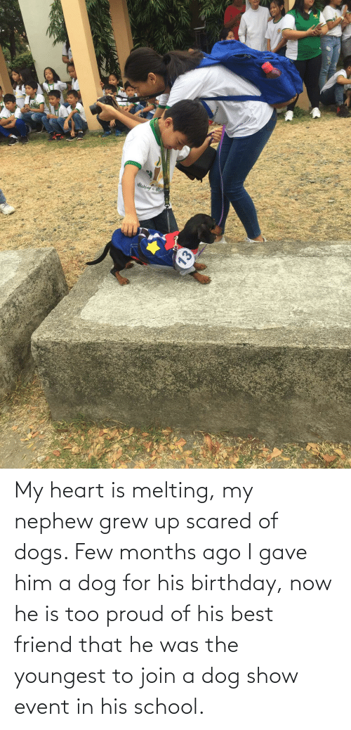 melting: My heart is melting, my nephew grew up scared of dogs. Few months ago I gave him a dog for his birthday, now he is too proud of his best friend that he was the youngest to join a dog show event in his school.