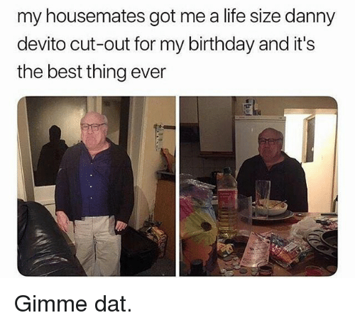 life size: my housemates got me a life size danny  devito cut-out for my birthday and it's  the best thing ever Gimme dat.
