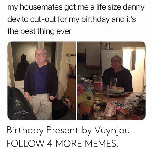 life size: my housemates got me a life size danny  devito cut-out for my birthday and it's  the best thing ever Birthday Present by Vuynjou FOLLOW 4 MORE MEMES.