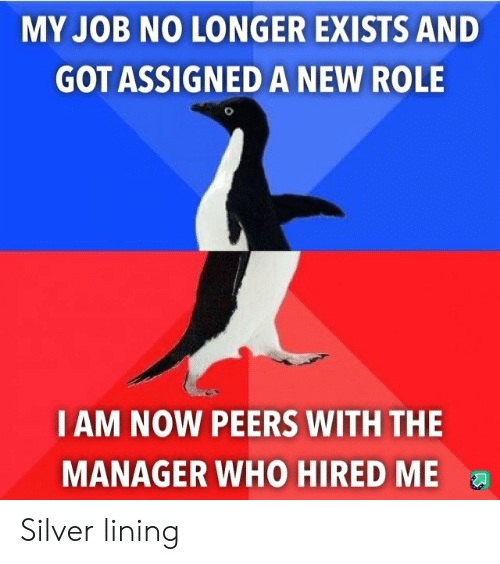 Silver, Got, and Job: MY JOB NO LONGER EXISTS AND  GOT ASSIGNED A NEW ROLE  IAM NOW PEERS WITH THE  MANAGER WHO HIRED ME Silver lining