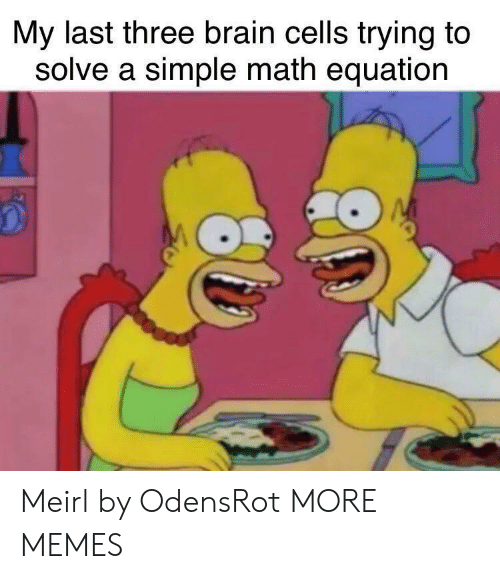 Equation: My last three brain cells trying to  solve a simple math equation Meirl by OdensRot MORE MEMES