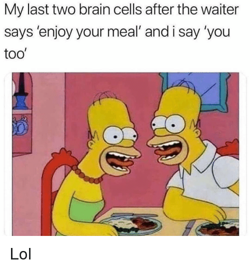 Funny, Lol, and Brain: My last two brain cells after the waiter  says 'enjoy your meal' and i say 'you  too' Lol
