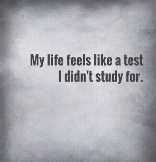 Life, Test, and For: My life feels like a test  I didn't study for.