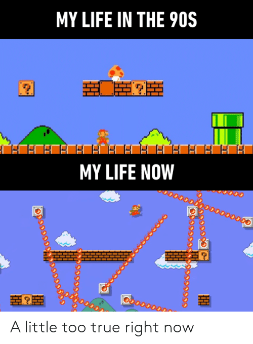 Dank, Life, and True: MY LIFE IN THE 90S  MY LIFE NOW  38888 A little too true right now