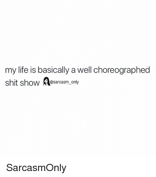 Shit Show: my life is basically a well choreographed  shit show asarcasm only SarcasmOnly