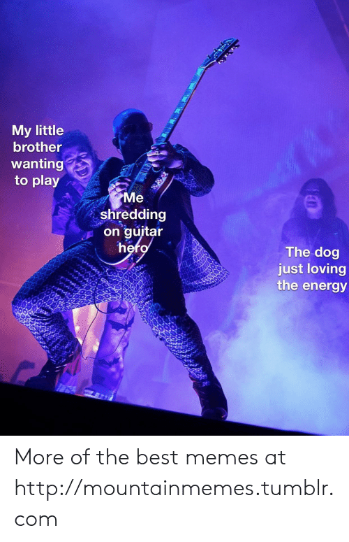 Loving: My little  brother  wanting  to play  Me  shredding  on guitar  hero  The dog  just loving  the energy More of the best memes at http://mountainmemes.tumblr.com
