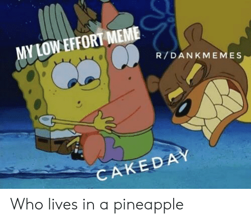 R Dankmemes: MY LOW EFFORT MEME  R/DANKMEMES  CAKEDAY Who lives in a pineapple