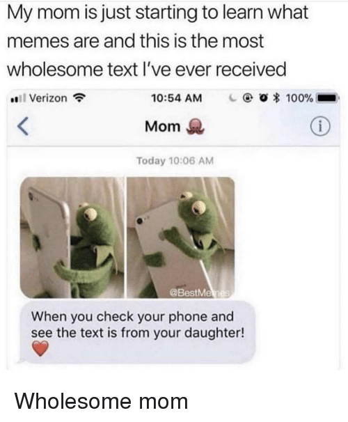 Anaconda, Memes, and Phone: My mom is just starting to learn what  memes are and this is the most  wholesome text l've ever received  #811 Verizon  10:54 AM  O * 100%-  Mom  Today 10:06 AM  @BestMe  When you check your phone and  see the text is from your daughter! Wholesome mom