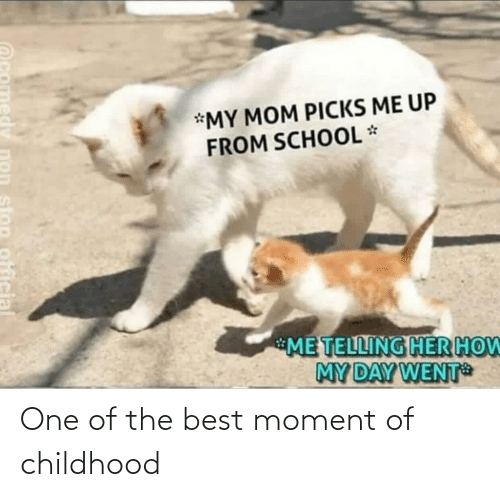 Telling: *MY MOM PICKS ME UP  FROM SCHOOL *  ME TELLING HER HOW  MY DAY WENT  stop official One of the best moment of childhood