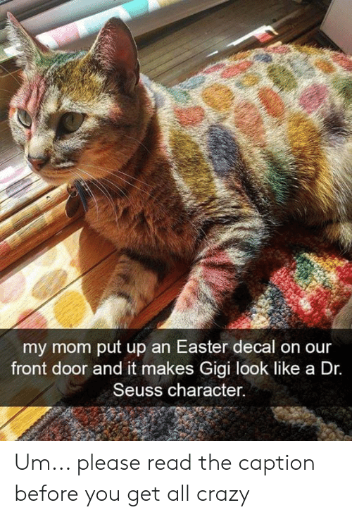 Decal: my mom put up an Easter decal on our  front door and it makes Gigi look like a Dr.  Seuss character. Um... please read the caption before you get all crazy