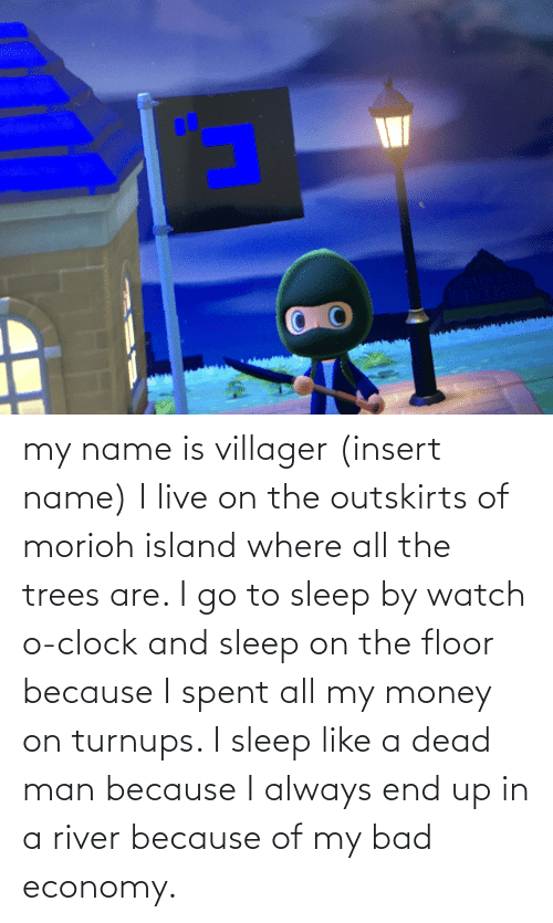 Money: my name is villager (insert name) I live on the outskirts of morioh island where all the trees are. I go to sleep by watch o-clock and sleep on the floor because I spent all my money on turnups. I sleep like a dead man because I always end up in a river because of my bad economy.