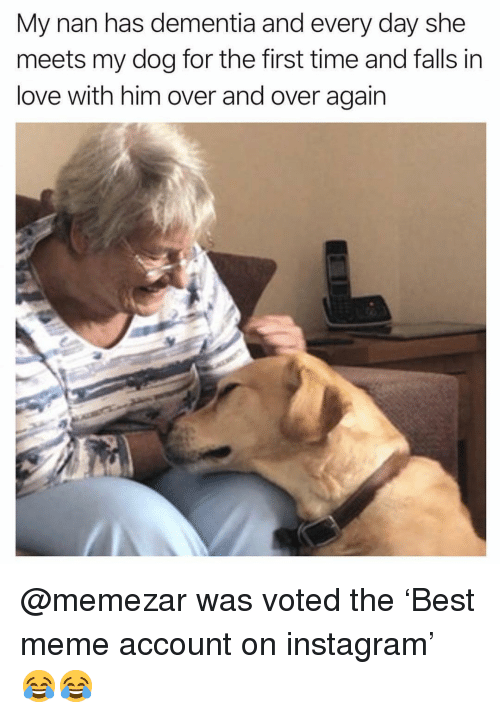 Funny, Instagram, and Love: My nan has dementia and every day she  meets my dog for the first time and falls in  love with him over and over again @memezar was voted the 'Best meme account on instagram' 😂😂