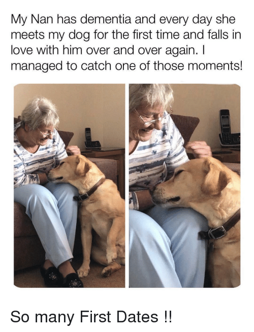Love, Dementia, and Time: My Nan has dementia and every day she  meets my dog for the first time and falls in  love with him over and over again. I  managed to catch one of those moments! So many First Dates !!