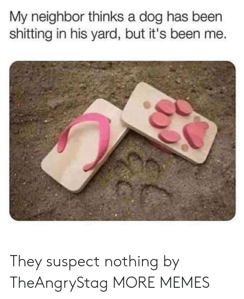 Dank, Memes, and Target: My neighbor thinks a dog has been  shitting in his yard, but it's been me. They suspect nothing by TheAngryStag MORE MEMES