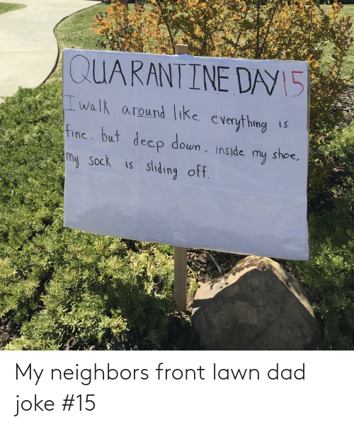 Front: My neighbors front lawn dad joke #15