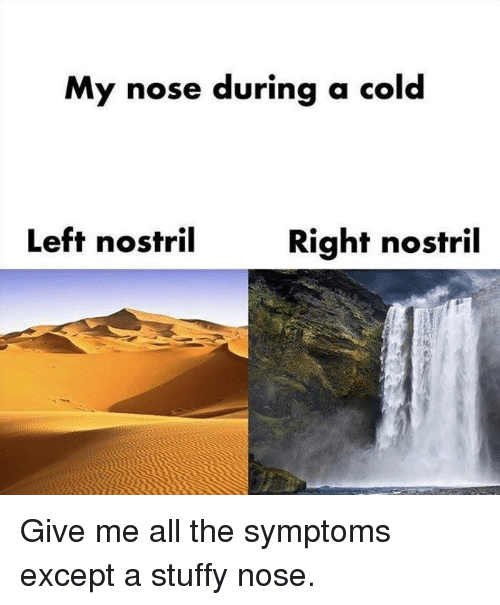Dank, Cold, and All The: My nose during a cold  Left nostril  Right nostril Give me all the symptoms except a stuffy nose.