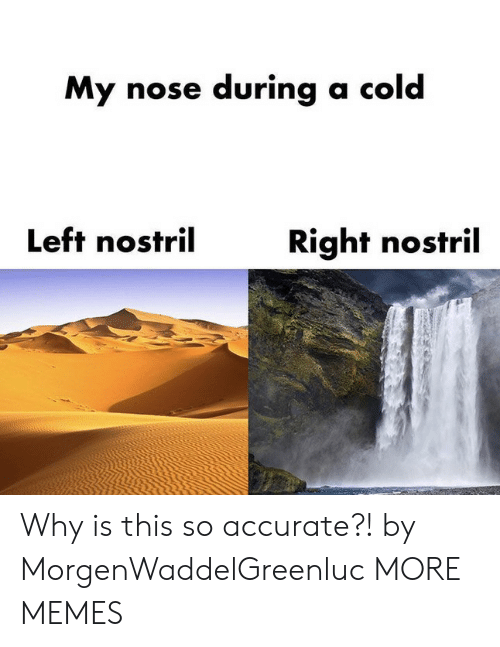 Dank, Memes, and Target: My nose during a cold  Left nostril  Right nostril Why is this so accurate?! by MorgenWaddelGreenluc MORE MEMES