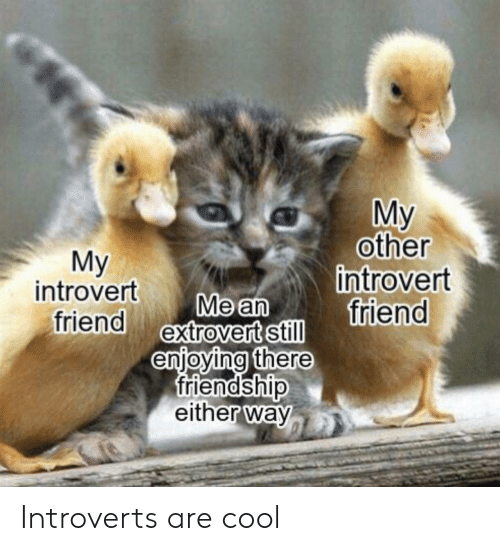 introverts: My  other  introvert  friend  Мy  introvert  friend extrovert still  Me an  enjoying there  friendship  either way Introverts are cool
