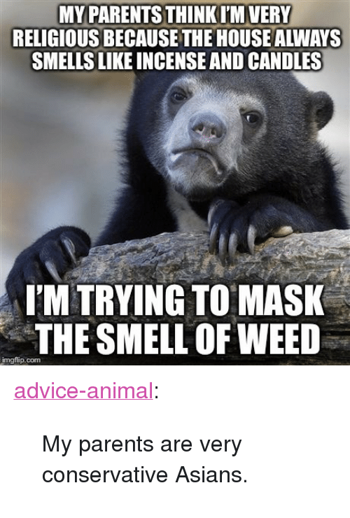 "Advice, Parents, and Smell: MY PARENTS THINKI'M VERY  RELIGIOUS BECAUSE THE HOUSE ALWAYS  SMELLS LIKE INCENSE AND CANDLES  I'M TRYING TO MASK  THE SMELL OF WEED  imgflip.com <p><a href=""http://advice-animal.tumblr.com/post/169230013902/my-parents-are-very-conservative-asians"" class=""tumblr_blog"">advice-animal</a>:</p>  <blockquote><p>My parents are very conservative Asians.</p></blockquote>"