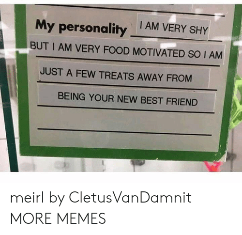 Best Friend, Dank, and Food: My personality AM VERY SHY  BUT I AM VERY FOOD MOTIVATED SO I AM  JUST A FEW TREATS AWAY FROM  BEING YOUR NEW BEST FRIEND meirl by CletusVanDamnit MORE MEMES