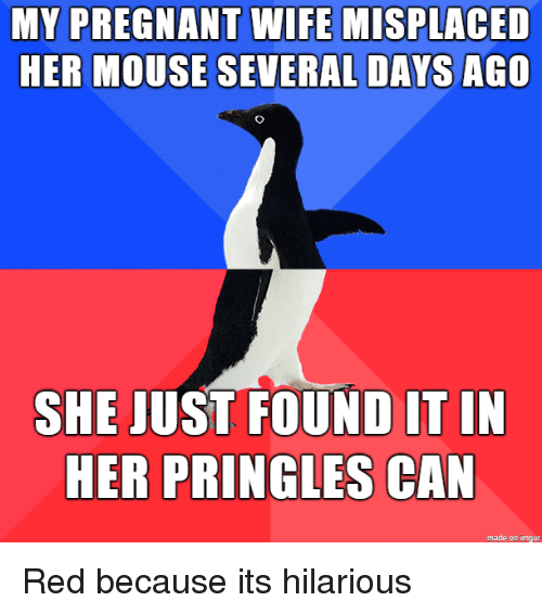 Pregnant Wife: MY PREGNANT WIFE MISPLACED  HER MOUSE SEVERAL DAYS AGO  SHE JUST FOUND IT IN  HER PRINGLES CAN  made on imgur Red because its hilarious