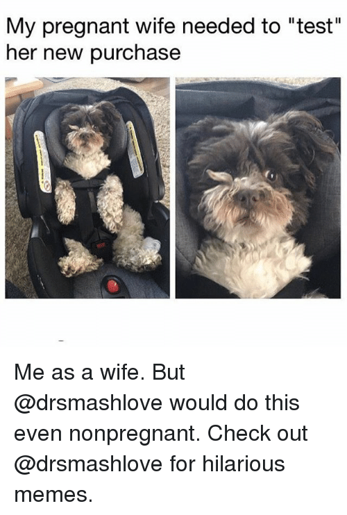 """Memes, Pregnant, and Test: My pregnant wife needed to """"test""""  her new purchase Me as a wife. But @drsmashlove would do this even nonpregnant. Check out @drsmashlove for hilarious memes."""