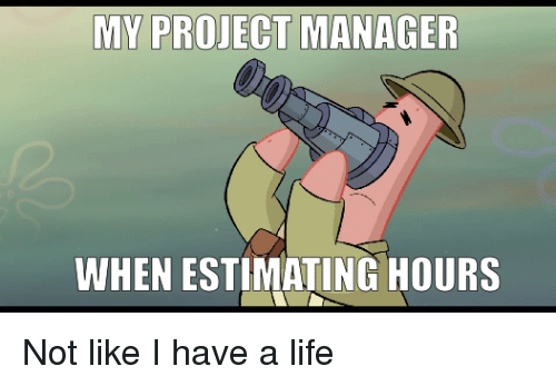 project manager: MY PROJECT MANAGER  WHEN ESTIMATING HOURS Not like I have a life