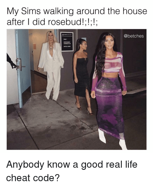 Life, Good, and House: My Sims walking around the house  after I did rosebud!;!;!;  @betches Anybody know a good real life cheat code?