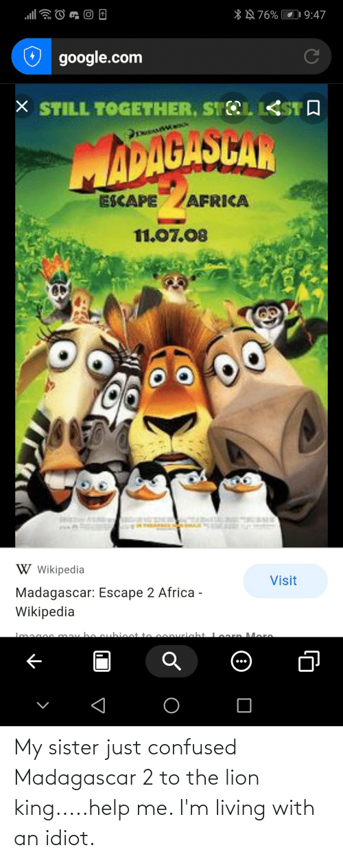 Lion King: My sister just confused Madagascar 2 to the lion king.....help me. I'm living with an idiot.