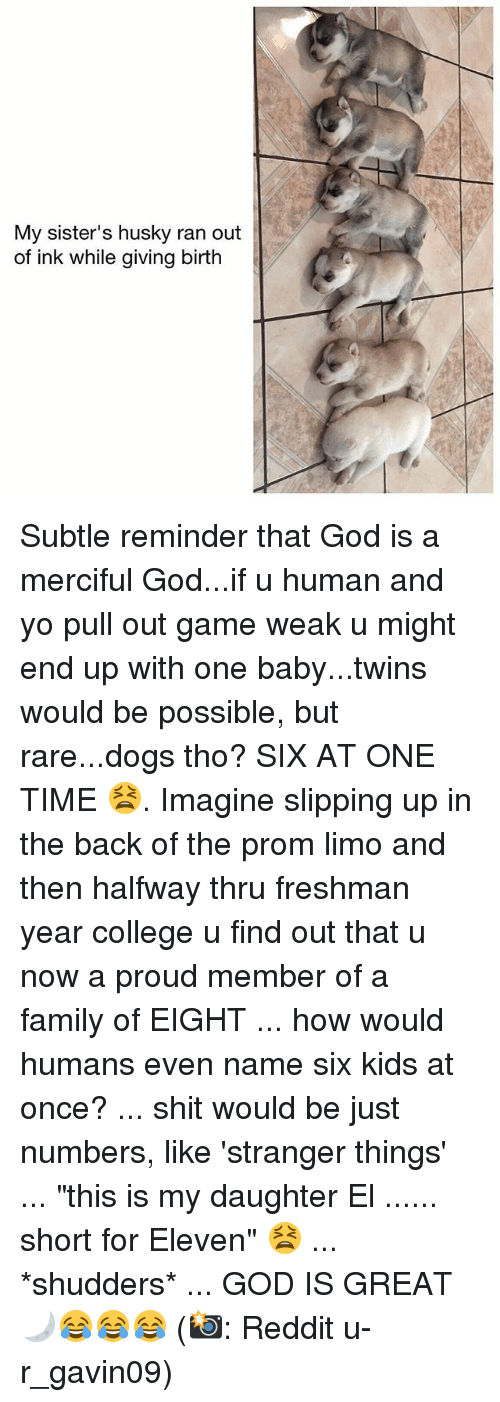 """Rareness: My sister's husky ran out  of ink while giving birth Subtle reminder that God is a merciful God...if u human and yo pull out game weak u might end up with one baby...twins would be possible, but rare...dogs tho? SIX AT ONE TIME 😫. Imagine slipping up in the back of the prom limo and then halfway thru freshman year college u find out that u now a proud member of a family of EIGHT ... how would humans even name six kids at once? ... shit would be just numbers, like 'stranger things' ... """"this is my daughter El ...... short for Eleven"""" 😫 ... *shudders* ... GOD IS GREAT 🌙😂😂😂 (📸: Reddit u-r_gavin09)"""