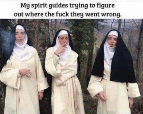 Spirit: My spirit guides trying to figure  out where the fuck they went wrong.