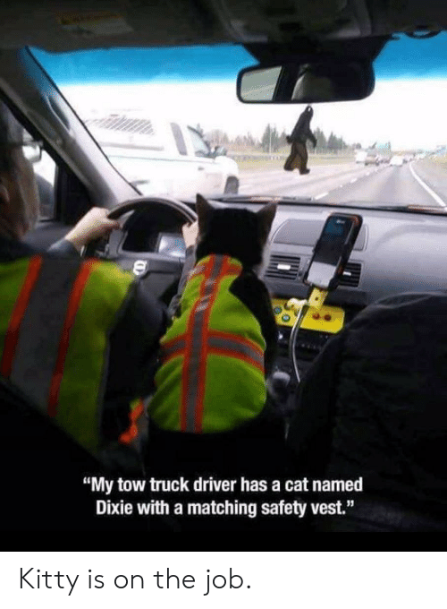 """Tow: """"My tow truck driver has a cat named  Dixie with a matching safety vest."""" Kitty is on the job."""